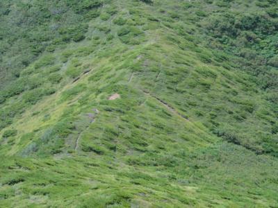 南斜里岳 094