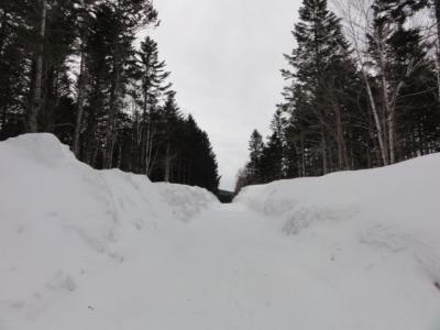 藻琴山スキーコース 031