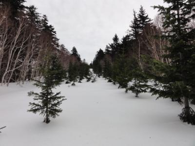 藻琴山スキーコース 044
