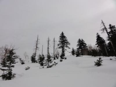 藻琴山スキーコース 049