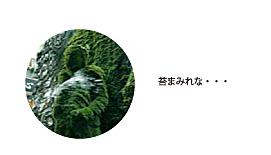 fudobookshiori01.jpg