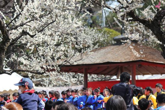 umeokura (3)