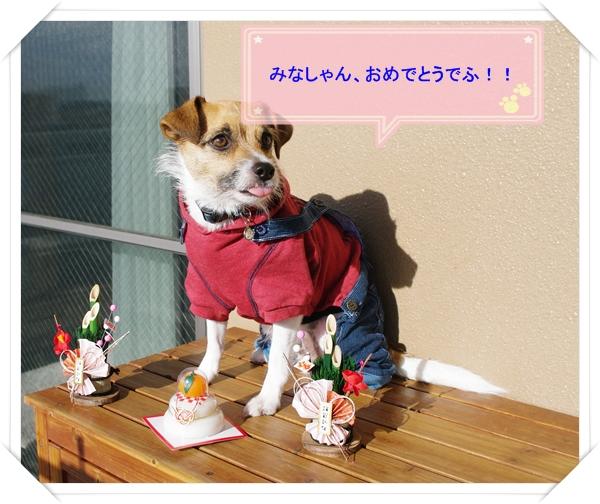 2013あけおめ03