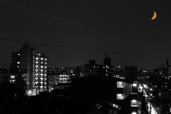 blog_合成_3