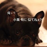 blog_IMG_0502_1.jpg