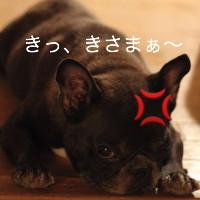blog_IMG_0503_1.jpg