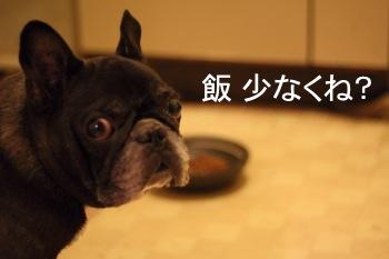 blog_IMG_0647.jpg