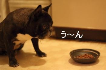 blog_IMG_0651.jpg