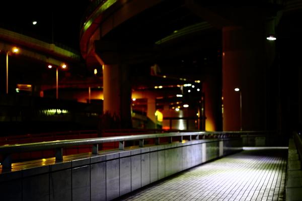 blog_IMG_1174.jpg