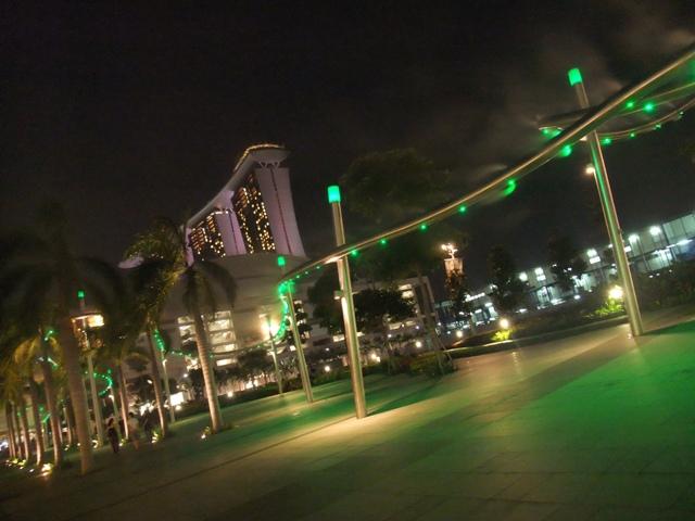 夜のお散歩14