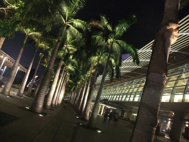 夜のお散歩16
