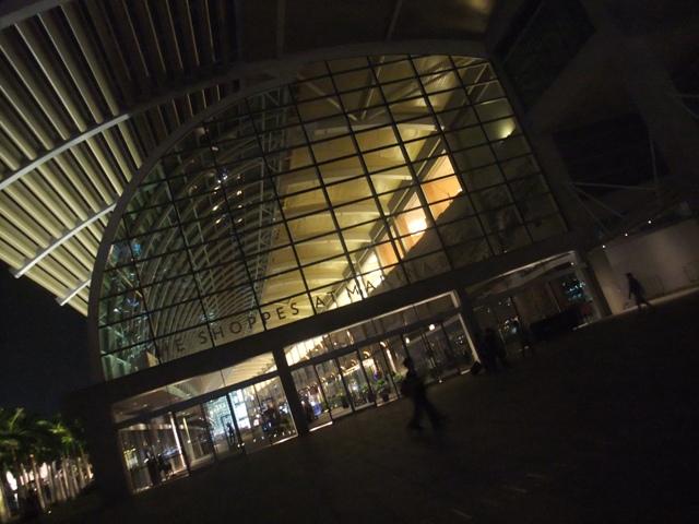 夜のお散歩15