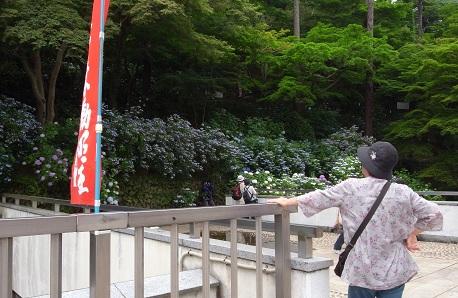 高幡不動3