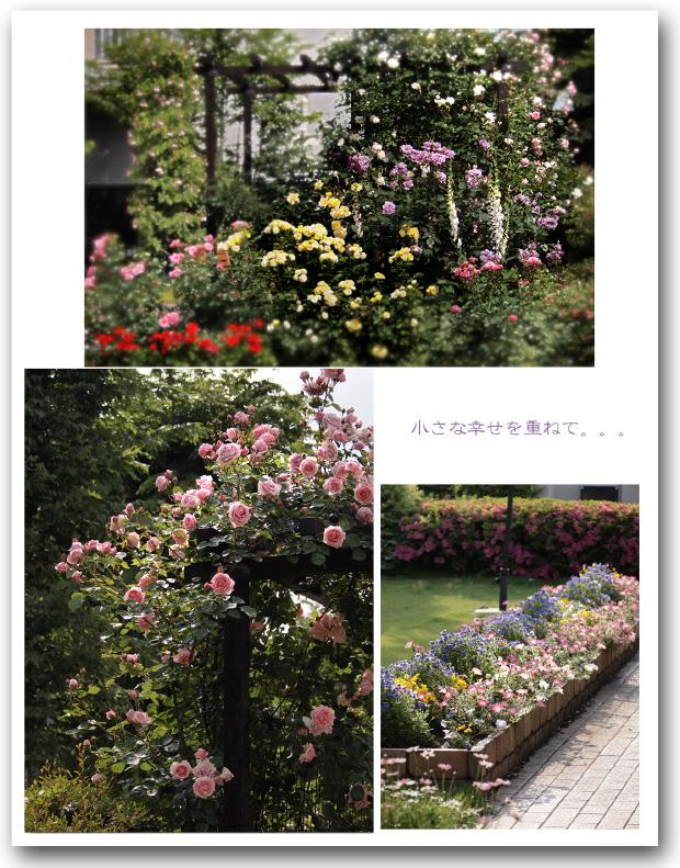 530_20120613212537.jpg