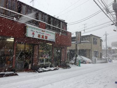 成人の日大雪