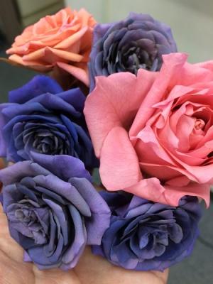 最近作ったバラ