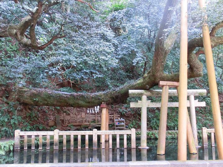 okinawa 518-1