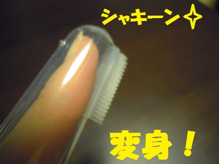 ソフト歯ブラシ