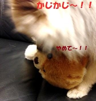かじかじ~!!