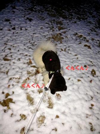 雪の匂い~♪