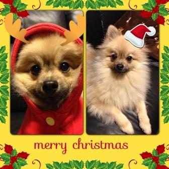 クリスマス②b