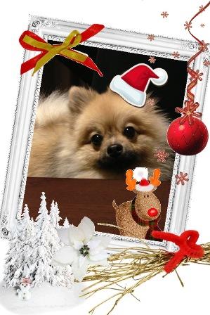 クリスマス①b