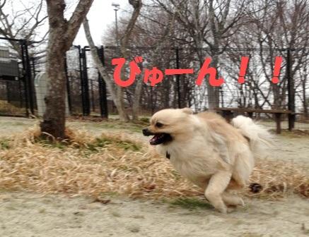 a猛スピード