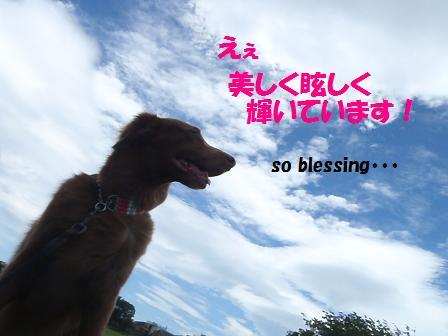 コピー ~ B20JUN12 052TSbs