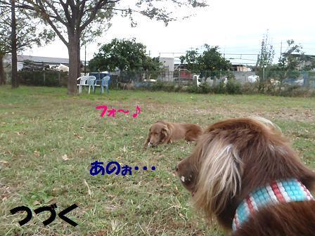 コピー ~ コピー ~ SW25OCT12 110HANA