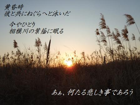 a08JAN13 055DD