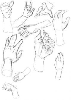 20120529_hand.jpg
