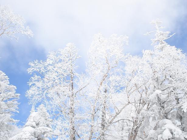 福島スキー1
