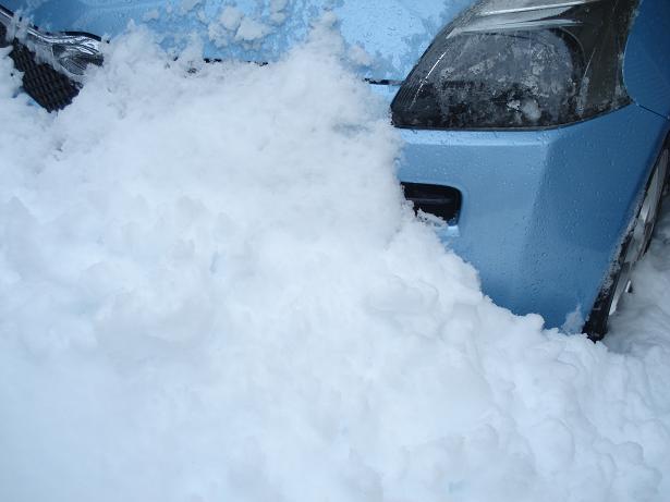H26.2.15 120年振りの大雪ー1yuki