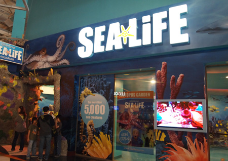 Sealife Aquarium