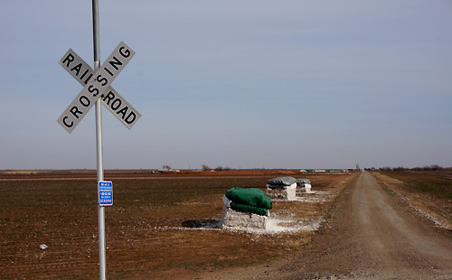 コットン畑の中を走る線路