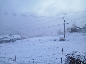 20140122雪2