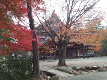 20141120紅葉~~♪2