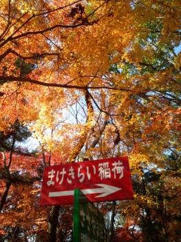 20141122まけきらい稲荷紅葉5