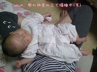 CIMG8466.jpg