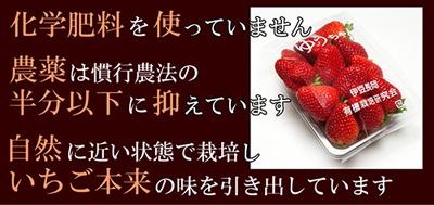 9_20130129060037.jpg