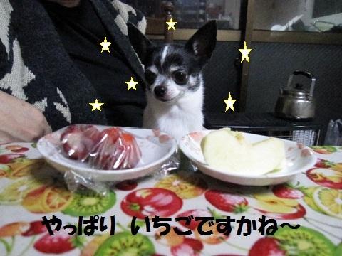IMG_6839_20130313224810.jpg