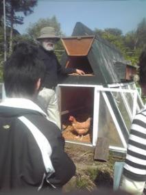 03鶏小屋