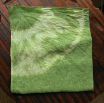 セイタカ緑染め2