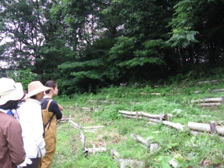 01斜面の畑