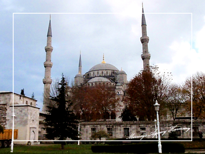 Turky_-095.jpg