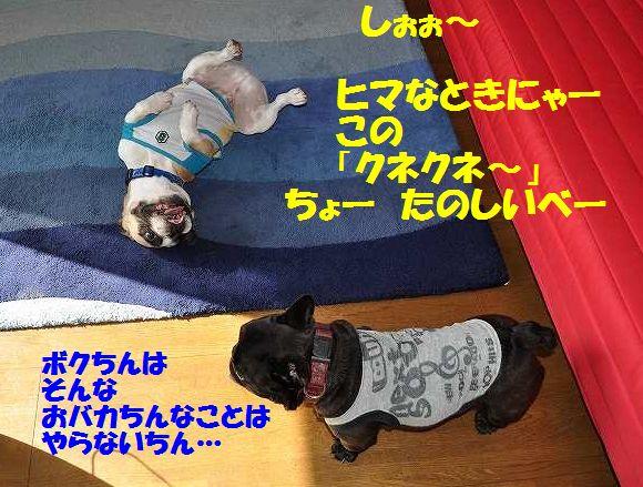002_201412011422371c7.jpg