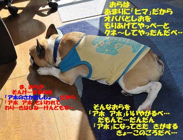 010_20141202090003131.jpg