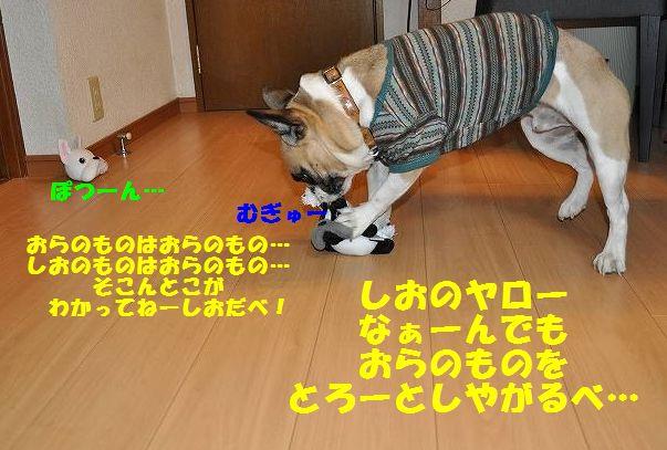 071_20141212151100ed7.jpg