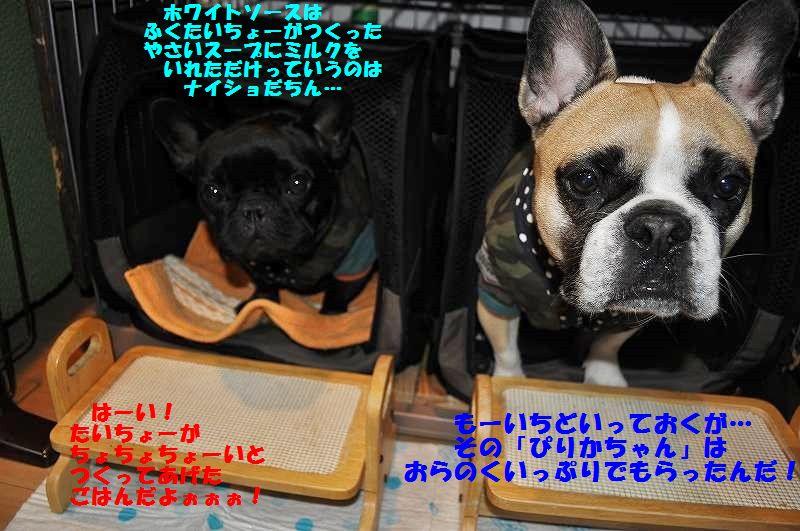 139_201412081332284c1.jpg