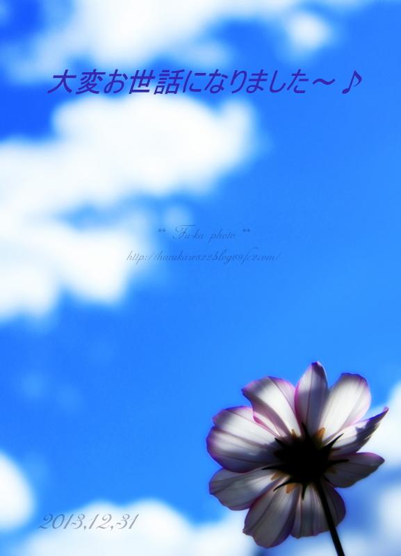 IMG_7615.jpg